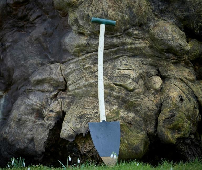 Johan Bülow's gamle spade